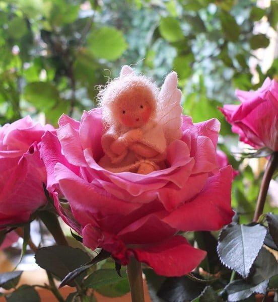 flora engel