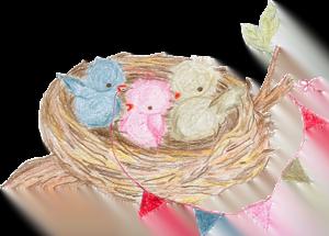 het-vrolijke-nestje-icon