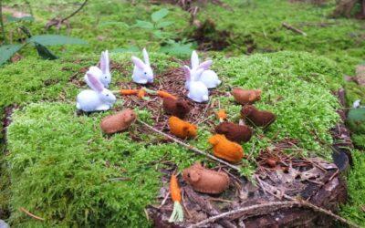 Van kippen en een kabouterbos tot Nepal