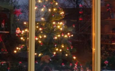 Kerst in de etalage
