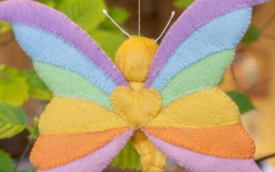 Regenboogvlinder