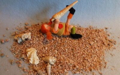 Zand en schelpen