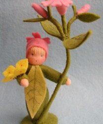 Bloemenkind dagkoekoeksbloem