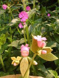 Roze bloemenzee