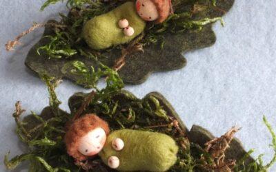 Twee bladmosbaby's